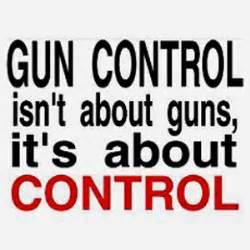 Essay on Gun Control Laws Bartleby